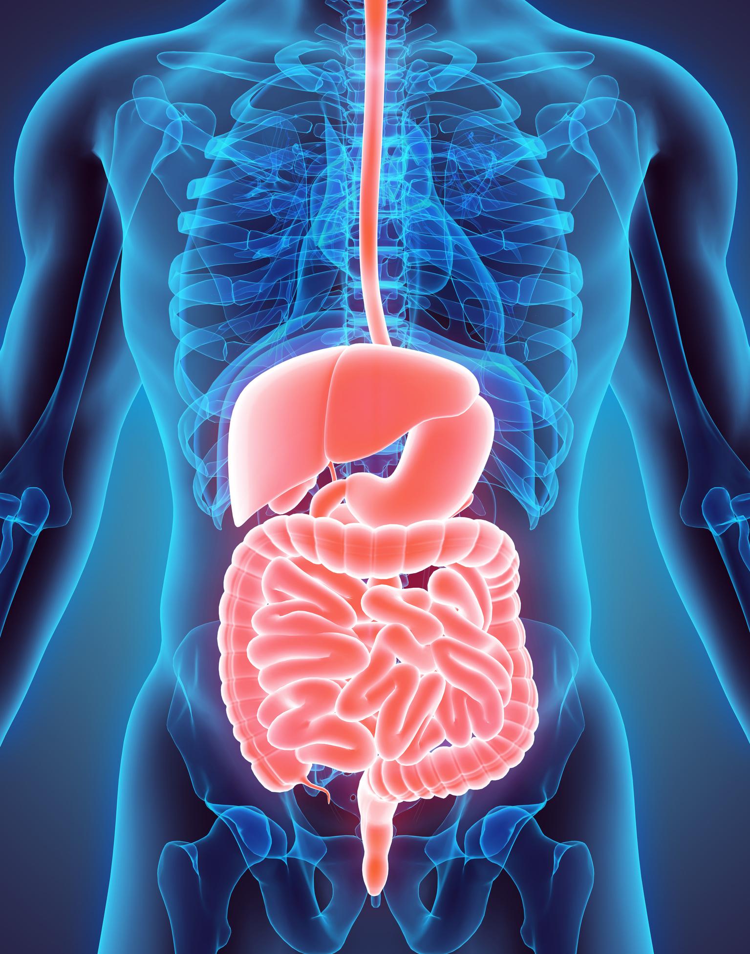 Gastrointestinal Cancer - West Cancer Center